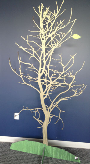Gatorfoam_CSI_tree1_CropWeb