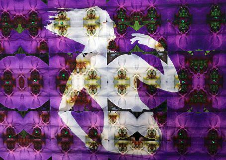 Chila Kumari Burman India Illuminated, Direct to Media UV Prints Gold Dibond