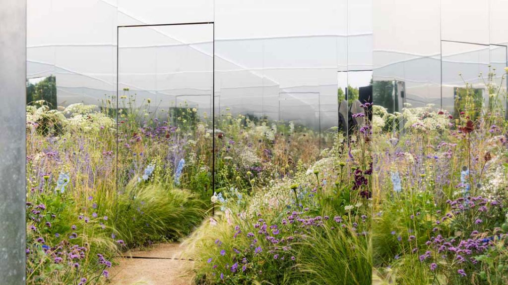 Apeiron The Dibond Garden, Alex Rainford-Roberts, Royal Horticultural Society, RHS